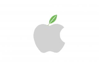 Greenpeace beklagt: Smartphones lassen sich kaum reparieren
