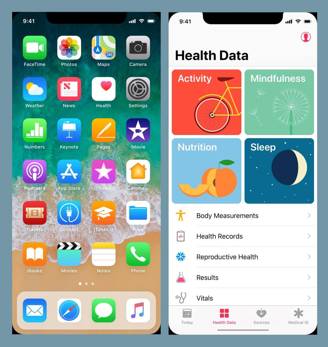 iPhone 8 Display Layout Leak