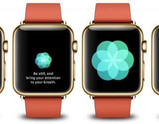 Bloomberg: Apple arbeitet an Apple Watch mit EKG