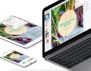 iWork-Update: Pages, Numbers und Keynote bekommen neue Vorlagen, Formen und weitere Features unter iOS 14