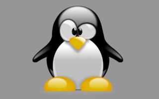 Linux läuft jetzt auch auf einem M1-Mac