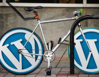 WordPress – das weit verbreitete CMS in Kombination mit einem Onlineshop betreiben